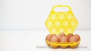 /Apenas... ovos!