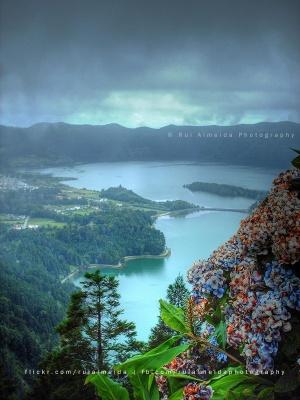 Paisagem Natural/Entre o nevoeiro e o lago