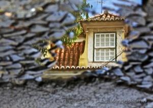 Paisagem Urbana/Um Reflexo