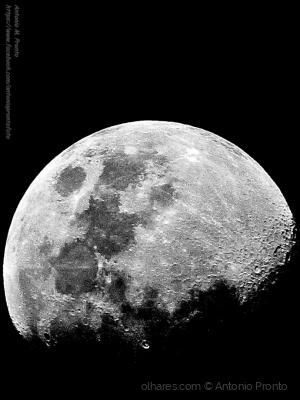 Outros/Moon