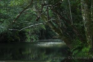 Paisagem Natural/Rio Ceira em Góis