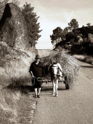 Gentes e Locais/a mulher e o burro