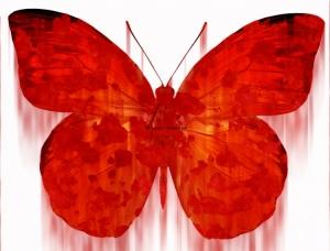 Arte Digital/Rustic butterfly