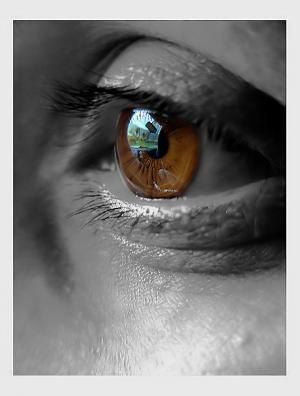 /Brown eyes