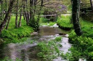 Paisagem Natural/Molhei os pés no rio...