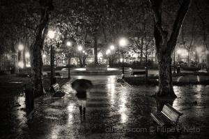 Paisagem Urbana/O Brilho da Chuva
