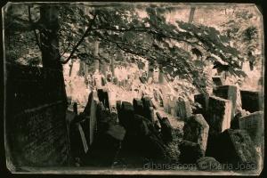 Gentes e Locais/Memorial ou o silêncio de pedras em cântico