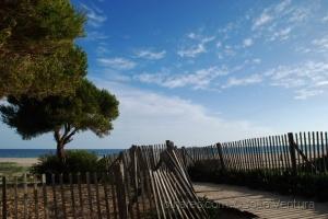 Paisagem Natural/Olhando a praia