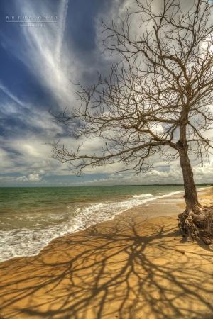 Paisagem Natural/Praia da Ponta Grande, Porto Seguro, BA-BR