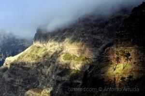 Paisagem Natural/Madeira C