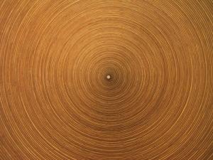 /Ilusão de optica