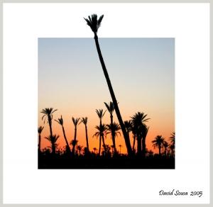 /Pôr do Sol em Marrakech