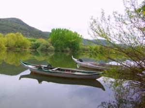 /Rego da barca
