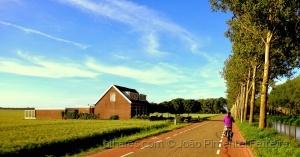 Paisagem Natural/Casa, árvores e bicicleta!