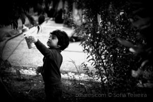 Fotojornalismo/Hello, baby