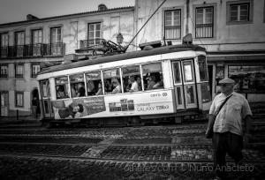 Gentes e Locais/560