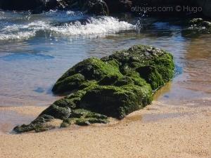 Outros/Pormenor da Praia