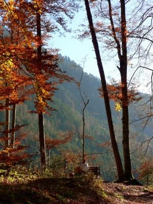Outros/Descanso ao Sol de Outono