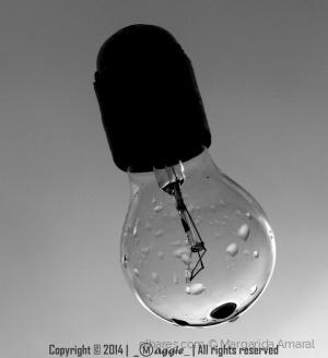 Outros/A lâmpada