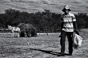 Fotojornalismo/Cotidiano do sertão....