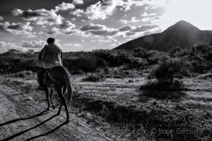 Fotojornalismo/A poesia do vaqueiro...