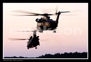 Desporto e Ação/Chinook / Stallion