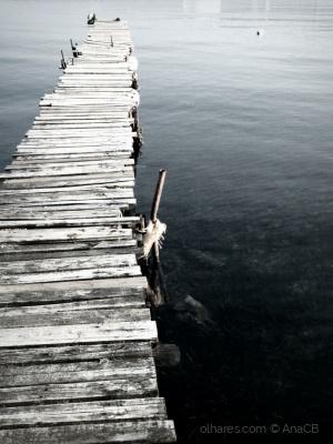 Paisagem Natural/Sobre a água