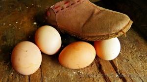 """Outros/Pisar em ovos...""""ler desc."""""""