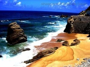 Paisagem Natural/Na curva do oceano