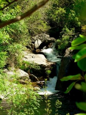 Paisagem Natural/O rio da minha aldeia