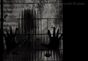 Outros/Behind window (desc)