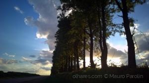 Paisagem Natural/Estrada, núvens e árvores