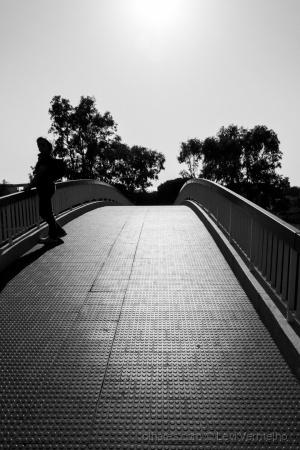 Paisagem Urbana/Ponte em contra-luz...