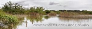 Paisagem Natural/Lagoon