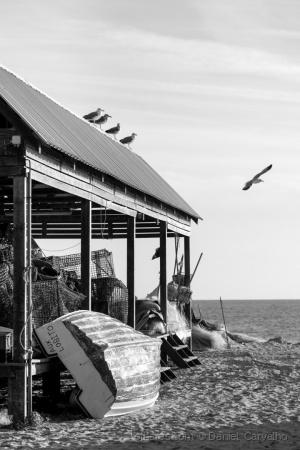 Gentes e Locais/Homens do Mar