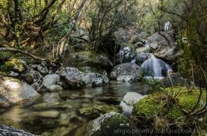 /Um dos muitos afluentes do Rio Homem - Gerês