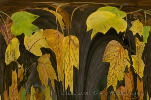 Abstrato/Danças com Folhas