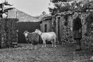 /As Gentes das Terras de Sicó...