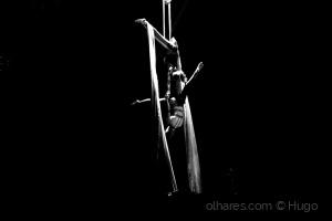 Espetáculos/Magia do Circo