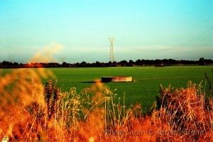Paisagem Natural/Serenidade do campo