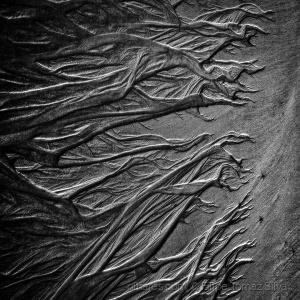 Outros/Raízes de areia