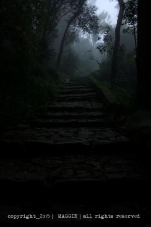 Paisagem Natural/Sintra