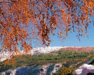 Paisagem Natural/Fim do Outono.