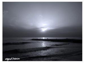 Paisagem Natural/Iluminando o fim do dia...