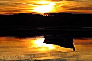 Paisagem Natural/Golden Silence...