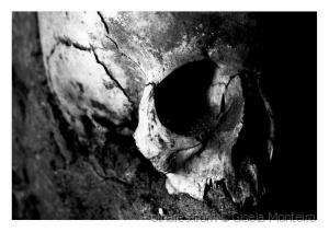 Outros/Caveira de Osso