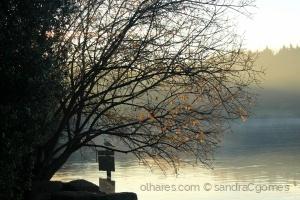 Paisagem Natural/Tranquilidade da alvorada