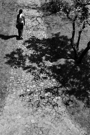 /O caminho das sombras