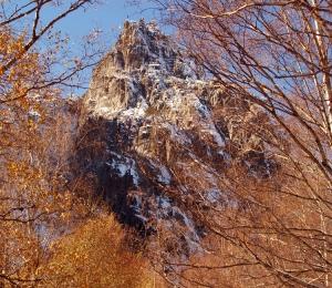 Paisagem Natural/Entre a neve e as folhas.