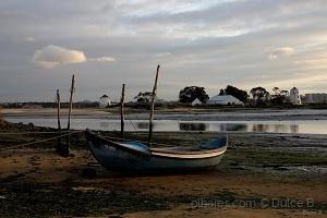 Paisagem Natural/a pesca e o rio